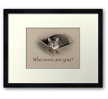 Who Even Are You - Lily the Cat Framed Print
