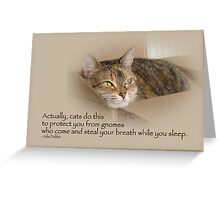 Cats Protecting You From Gnomes - Lily the Cat Greeting Card