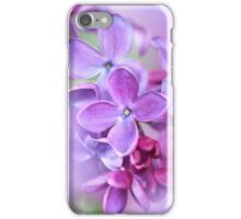 lilac on colorful background iPhone Case/Skin