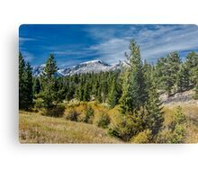 A Day In The Park With A View  Metal Print