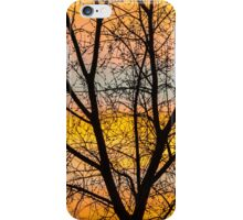 Caged Sunrise iPhone Case/Skin