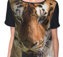 Close-up Portrait of a Striped Royal Bengal Tiger of India Chiffon Top