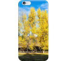 The Full Fall Color of the Cottonwoods! iPhone Case/Skin