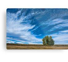 Blue Skies Sing Of Trees Metal Print