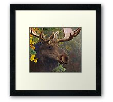 bull moose portrait amid aspen and spruce Framed Print