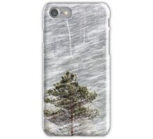 12.1.2017: Pine Trees in Blizzard II iPhone Case/Skin