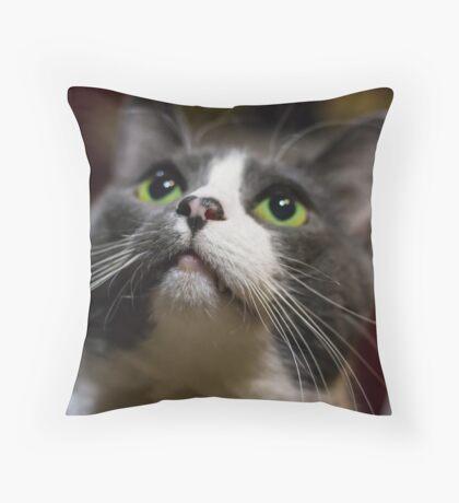 Artistic cat face  Throw Pillow