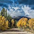 Changing Of The Colors - Colorado's New Coat by Gregory J Summers