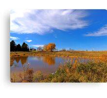 Forest Beach Migratory Preserve Pond Canvas Print