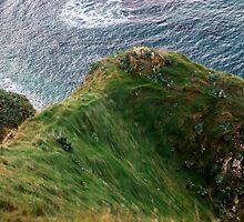 Grassy Hill - Travel Photography by JuliaRokicka