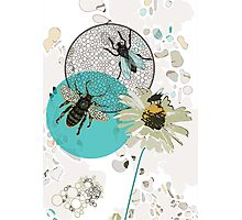Insects in Flight  Photographic Print