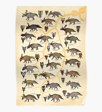 Ceratopsidae: Chasmosaurinae Dinosaurs (ver II) Poster