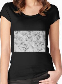 Ice crystals Women's Fitted Scoop T-Shirt