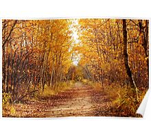 Autumn on the Harte Trail Poster