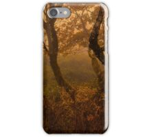 Halcyon Glow iPhone Case/Skin