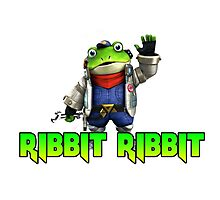 Ribbit Ribbit Photographic Print