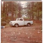 My Famous Fords by Sean Phelan