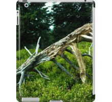 Storm-torned Tree - Nature Photography iPad Case/Skin