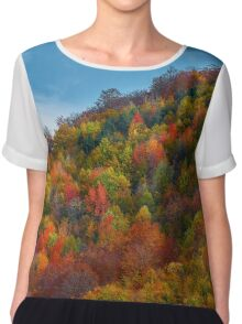 Colorful autumnal landscape Chiffon Top