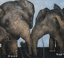 Wacky Birds on Baby Elephants by Tom Norton