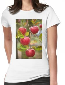 Closeup of red apples on branches Womens Fitted T-Shirt
