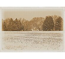 """""""Wide Country Christmas""""... prints and products Photographic Print"""