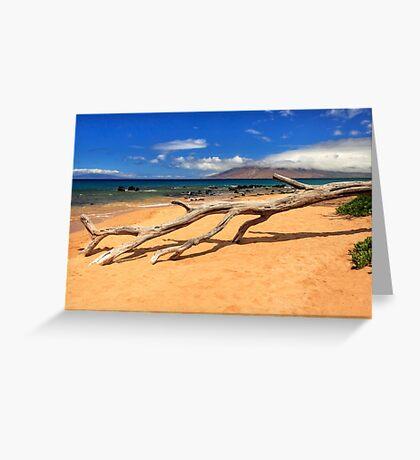 A Branch On Keawakapu Beach Greeting Card