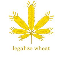 legalize wheat Photographic Print