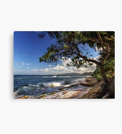 The Beach At Kapaa Canvas Print