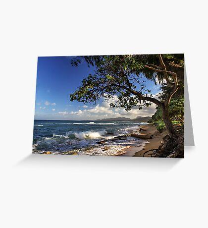 The Beach At Kapaa Greeting Card