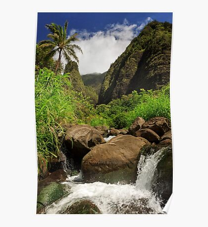 Waterfall At The Iao Needle Poster