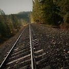 a jog on the tracks by Amanda Huggins