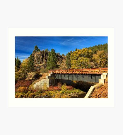 Susan River Bridge On The Bizz Art Print