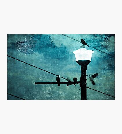 Birds On A Wire #1 Photographic Print