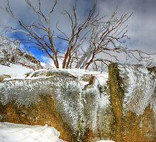 Winter's grip, Mount Buffalo by Kevin McGennan