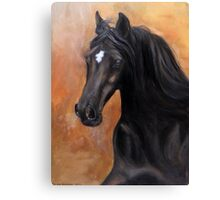 Horse - Lucky star Canvas Print
