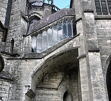 Chartres Cathedral ( 3 ) by Larry Lingard-Davis