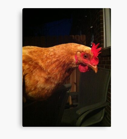 Buffy the Chicken Canvas Print