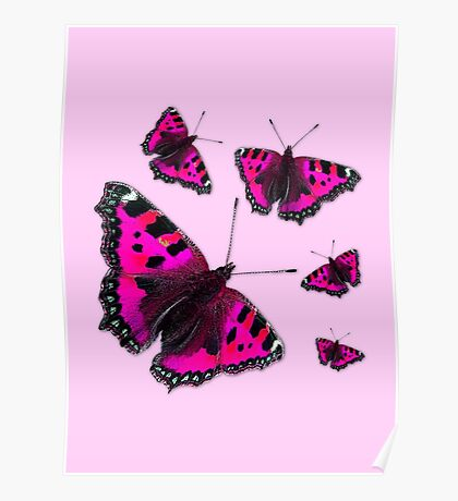 Admiral Butterfly #1 PINK Poster