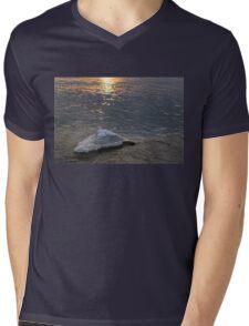 Icy Island -  Mens V-Neck T-Shirt