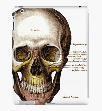 Gray's Anatomy Skull iPad Case/Skin