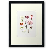 Flower Collage I Framed Print