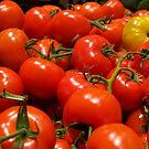 Organic Tomatoes by phil decocco