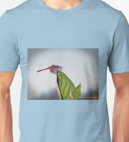 Dragonfly Sleeping Unisex T-Shirt
