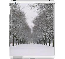 Winter Splendor iPad Case/Skin