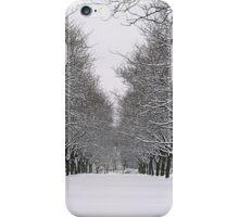 Winter Splendor iPhone Case/Skin