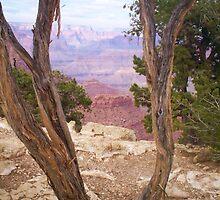 Grand Canyon by Jason White