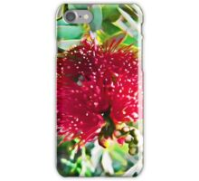 Light on a Red Flower 1 iPhone Case/Skin