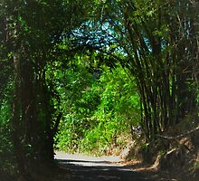 natural tunnel by LostInTheCircle