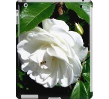 The timeless beauty of a white rose iPad Case/Skin